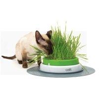 하겐 캣잇 센시스 2.0 그래스 플랜터 43161W 고양이장난감 캣그라스 캣글라스 캣닢재배 재배키트