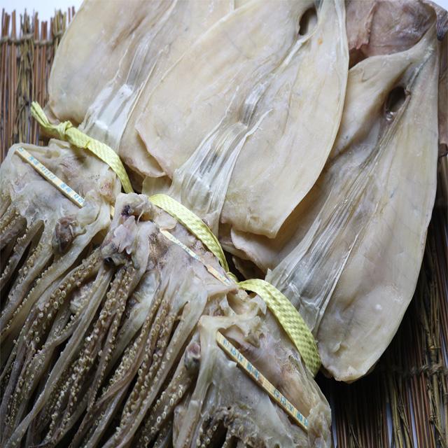 구룡포 마른오징어 20마리 건오징어