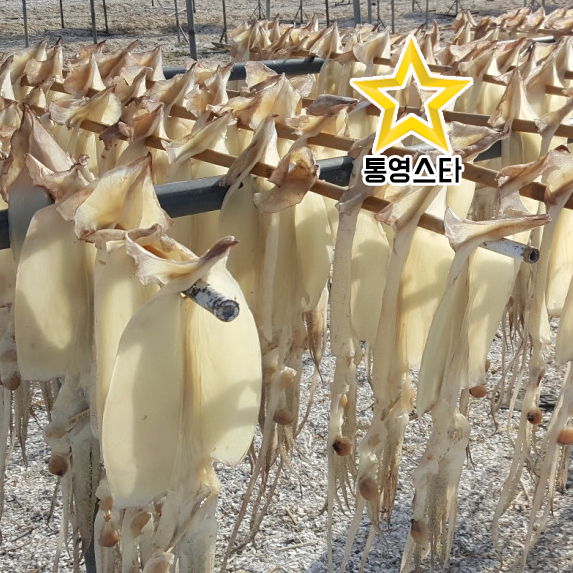 A급 싱싱 국산[마른오징어 파지](파품)800g