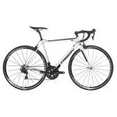 트리곤 다크니스 RSL 로드자전거 2019년