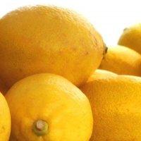 스위스 프래그런스 오일 레몬