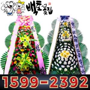 1599-2392 울산동구 꽃배달대행 이사축하화환 FLOWER