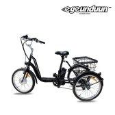 e근두운 삼륜 전기자전거 호미바이크 2018년