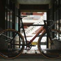 콘스탄틴 드래그 픽시자전거 2021년