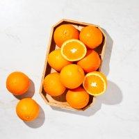 호주산 네이블 오렌지 10입