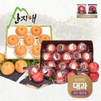 산지애 씻어나온 사과 4kg+산지애 배 5kg