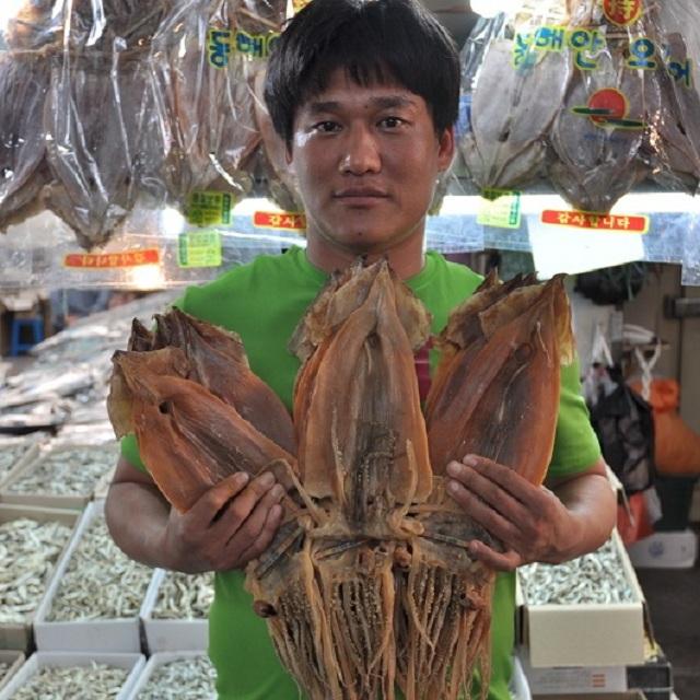 울릉도오징어 태하동 마른 반건조 동해안 배오징어 모음전