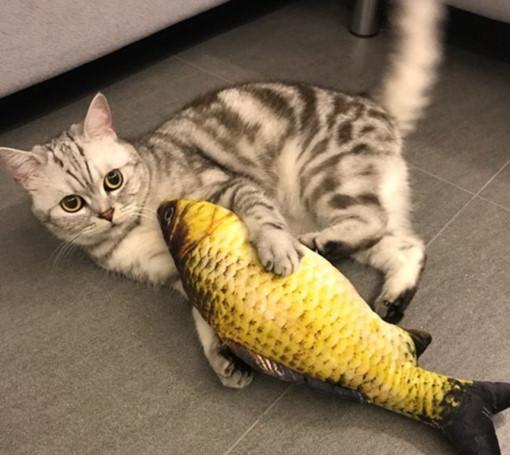 고양이 캣닢 쿠션 캣잎 인형