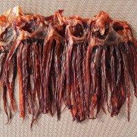 순돌이네 망족 장족 대왕오징어다리 문어발 5마리 350g 이상