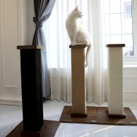 피카노리 고양이 기둥 스크래쳐 캣타워 캣폴 미니 장난감 PECA3620