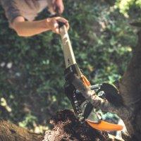 피스카스 고지가위 밤나무 열매 과일 가위