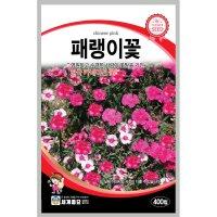 패랭이꽃 400립 / 씨앗 종자 꽃씨 꽃밭 화단