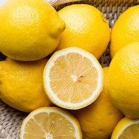 칠레 레몬 25개 42개 60개 개당 120g