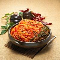 봄나리 국내산 배추 깍두기 김치주문10kg