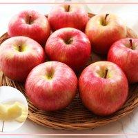 문경 명절 명품 껍질째먹는 감홍 사과 내안에 꿀있다 10Kg 꿀먹은사과