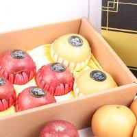 큰 과일만 담아 보내드리는 사과 배 선물 세트