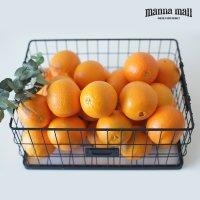호주 썬키스트 네이블 오렌지 64과 1박스 17kg