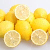 팬시 레몬 21-160과 소과 미국산 칠레 개당 100g내외 생레몬