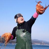 [산소포장] 당일 어획한 통영 돌문어 1kg