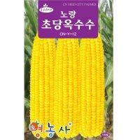 노랑 초당옥수수씨앗 100립