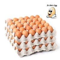 [닥터안스에그 3판 90알] 특란 대란 초란 무항생제 달걀 생란 당일생산 수의사 계란