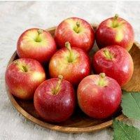 달콤한 경북 루비에스 미니 사과 홍로 사과 3kg 5kg 10kg
