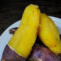 해남꿀고구마 베니하루카 황금 햇밤 고구마 5kg 10kg