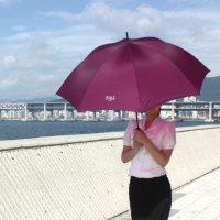 송월우산 초경량 UV차단 여성용 골프우산